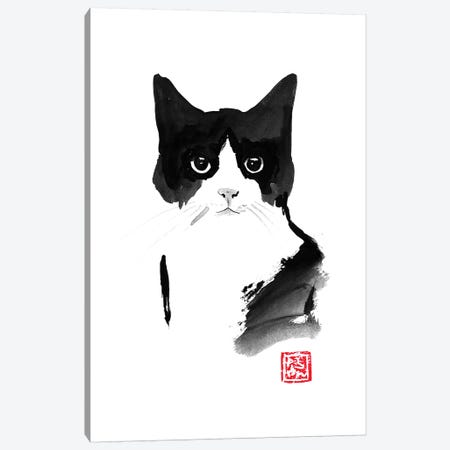 Straight Look Canvas Print #PCN163} by Péchane Canvas Art