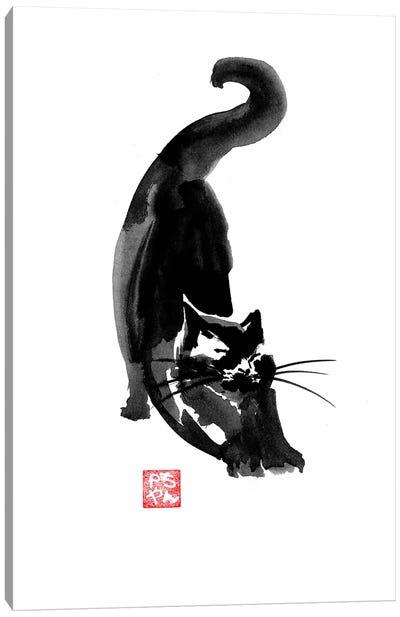 Stretching Cat Canvas Art Print