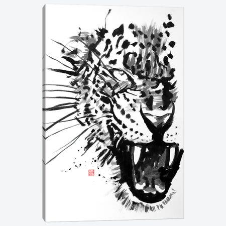 Tiger Canvas Print #PCN185} by Péchane Art Print
