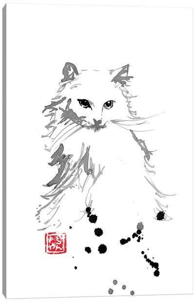 White Fur Canvas Art Print