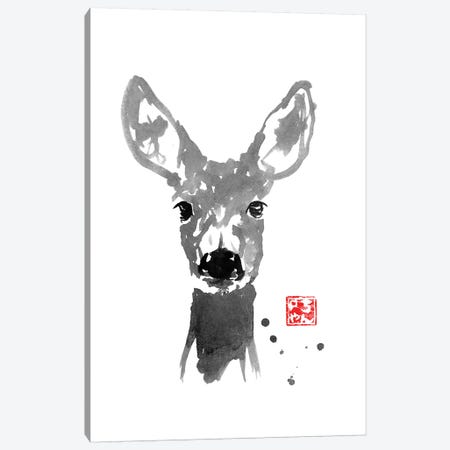 Young Deer Canvas Print #PCN200} by Péchane Canvas Art Print