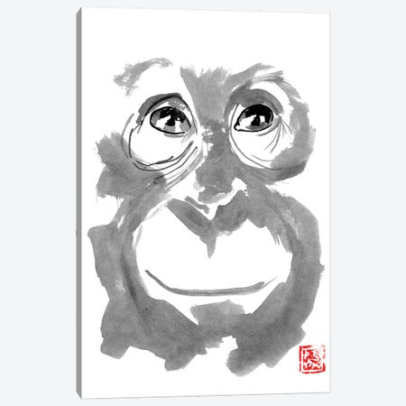 Young Orangutan Canvas Print #PCN201} by Péchane Art Print