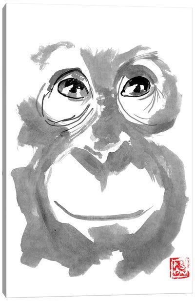 Young Orangutan Canvas Art Print