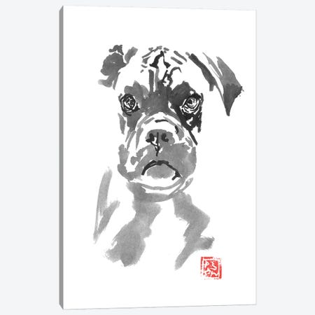 Bulldog Canvas Print #PCN207} by Péchane Canvas Artwork