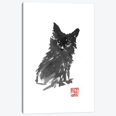 Fluffy Young Cat Canvas Print #PCN218} by Péchane Canvas Artwork