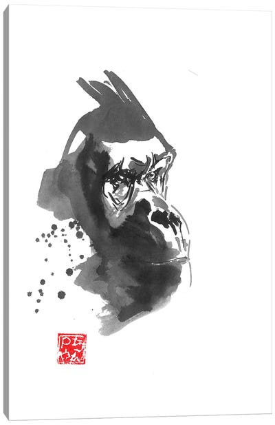 Gorilla Thoughts Canvas Art Print