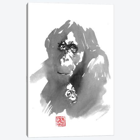 Gorillla Family Canvas Print #PCN221} by Péchane Art Print