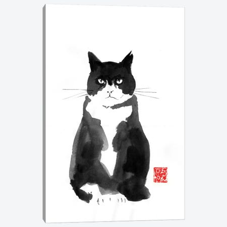 Grumpy Cat Canvas Print #PCN223} by Péchane Art Print