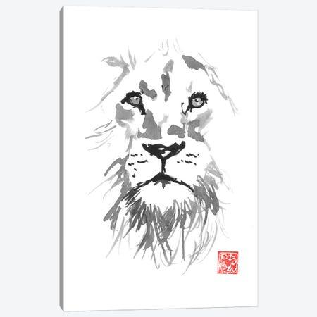 Lion In White Canvas Print #PCN228} by Péchane Art Print