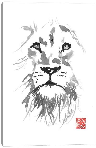 Lion In White Canvas Art Print