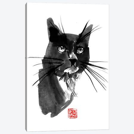 Out Cat Canvas Print #PCN234} by Péchane Canvas Print