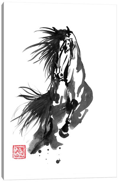Running Horse Canvas Art Print