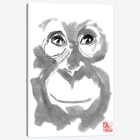 Smiling Orangutan Canvas Print #PCN244} by Péchane Canvas Artwork