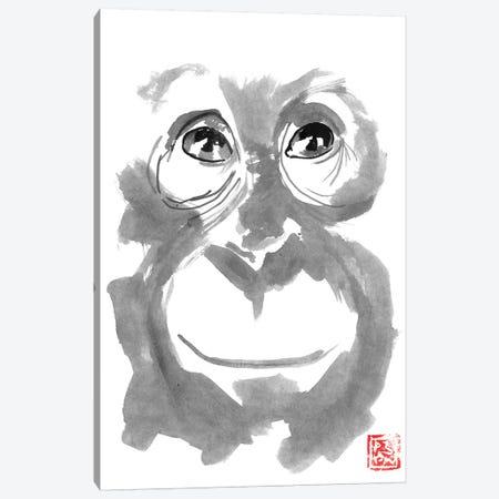 Smiling Orangutan Canvas Print #PCN244} by Péchane Canvas Artwork