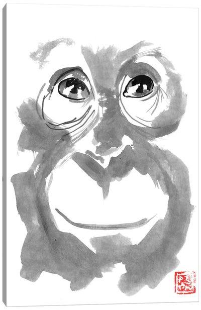 Smiling Orangutan Canvas Art Print