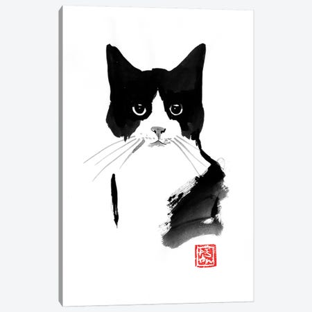 Stray Cat Canvas Print #PCN246} by Péchane Canvas Art