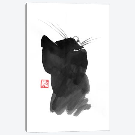Cat's Back I Canvas Print #PCN24} by Péchane Canvas Art