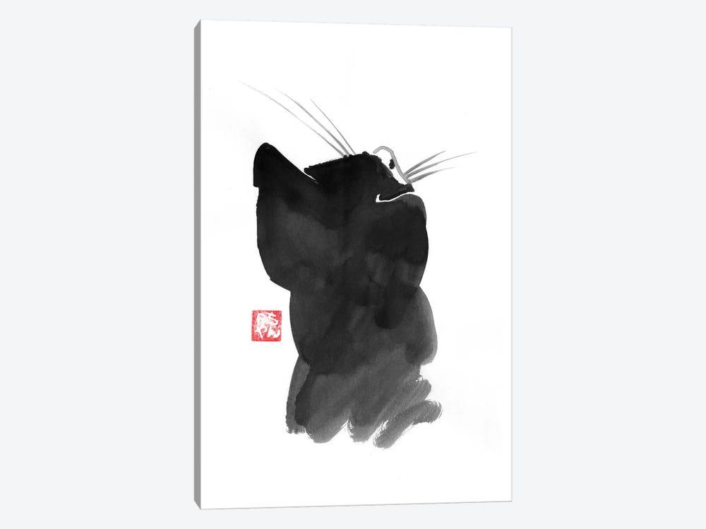 Cat's Back I by Péchane 1-piece Canvas Art Print