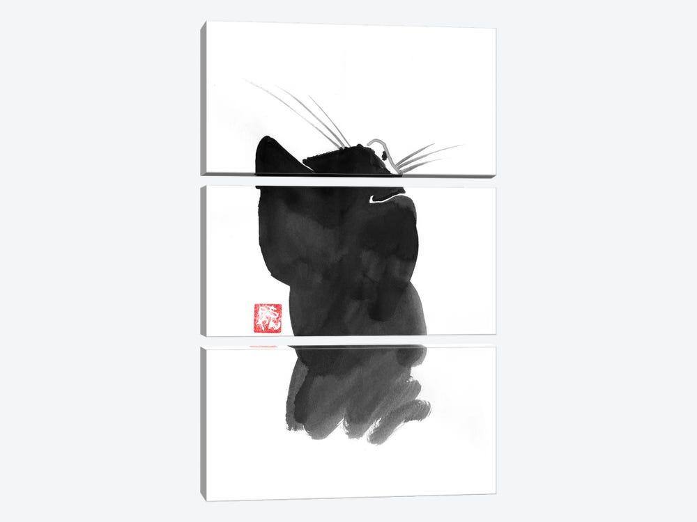 Cat's Back I by Péchane 3-piece Art Print