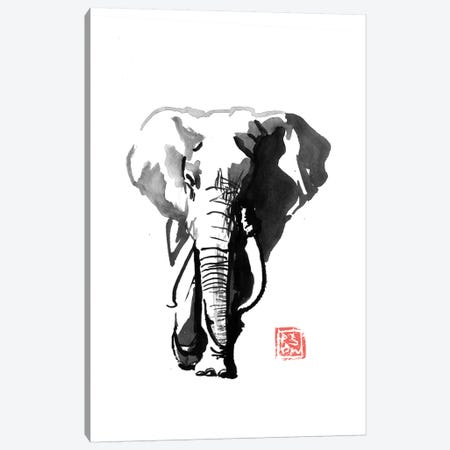 Walking Elephant Canvas Print #PCN253} by Péchane Canvas Art