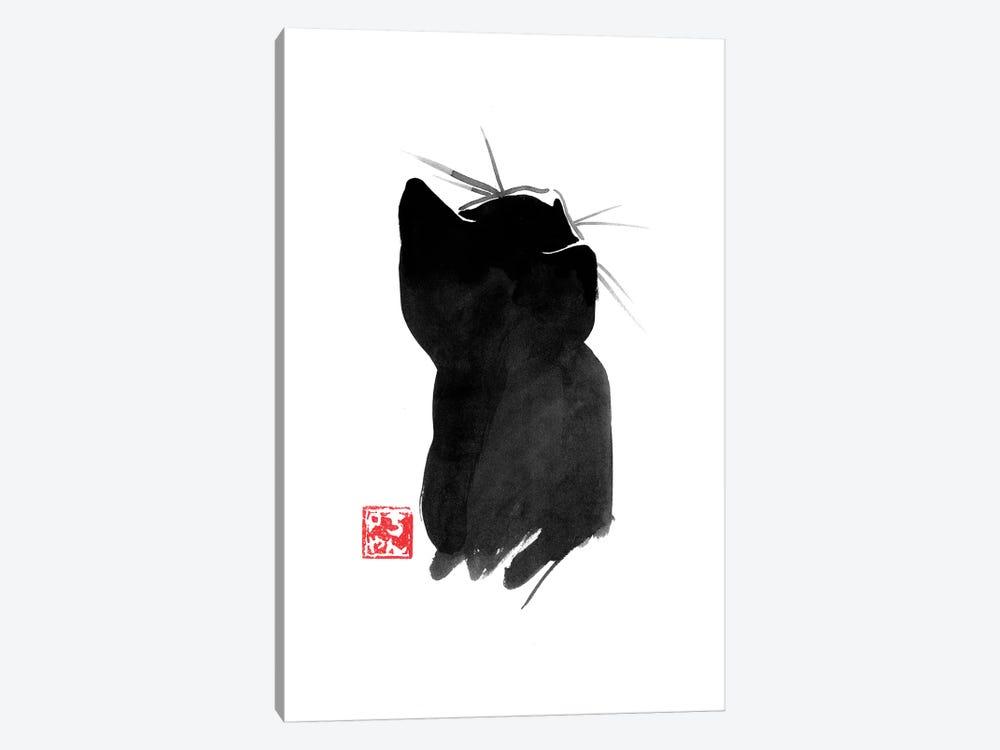 Cat's Back II by Péchane 1-piece Canvas Wall Art