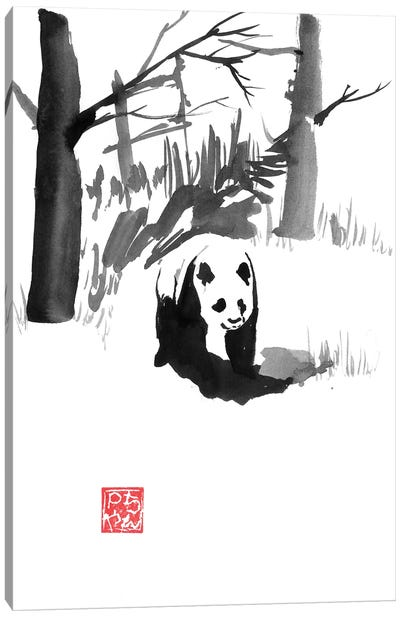 Panda In The Forest Canvas Art Print