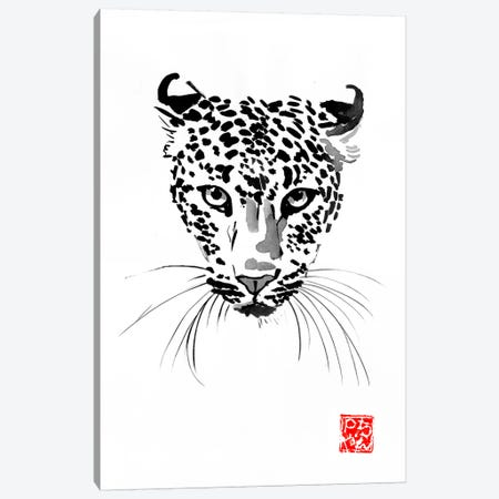 Leopard Canvas Print #PCN270} by Péchane Canvas Wall Art