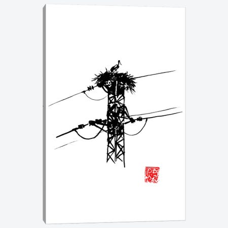 Stork Nest Canvas Print #PCN275} by Péchane Canvas Art Print