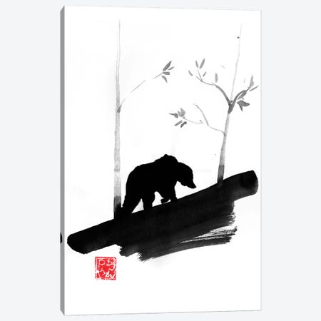 Bear II Canvas Print #PCN277} by Péchane Art Print