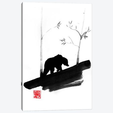 Bear II Canvas Print #PCN277} by Péchane Art Print