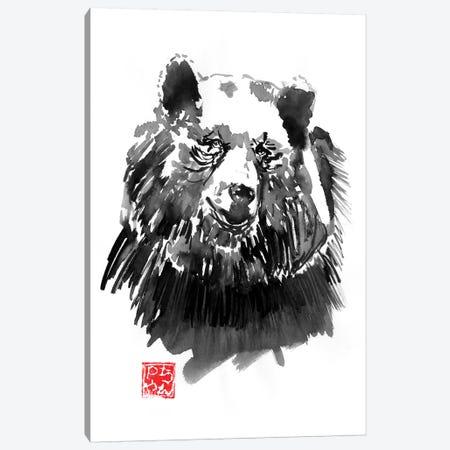 Bear Canvas Print #PCN278} by Péchane Canvas Artwork