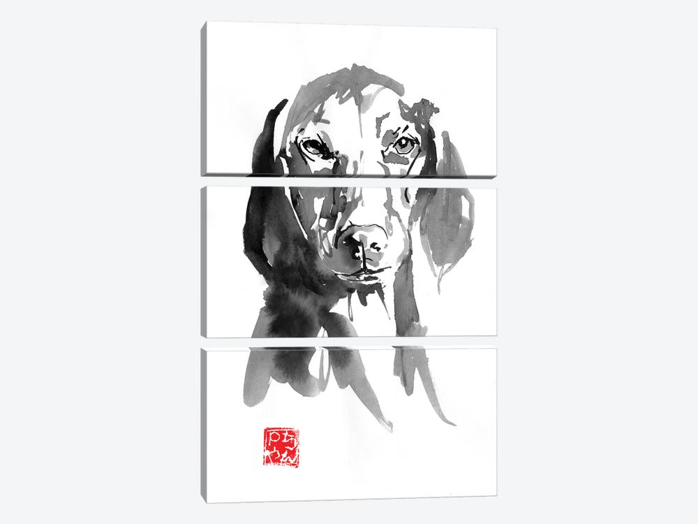 Dogface III by Péchane 3-piece Canvas Print