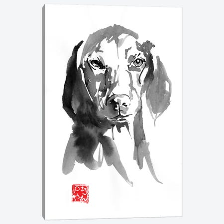 Dogface III Canvas Print #PCN280} by Péchane Art Print