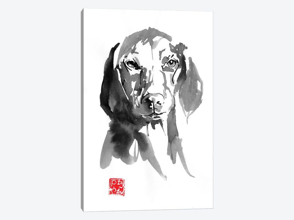 Dogface III by Péchane 1-piece Canvas Print