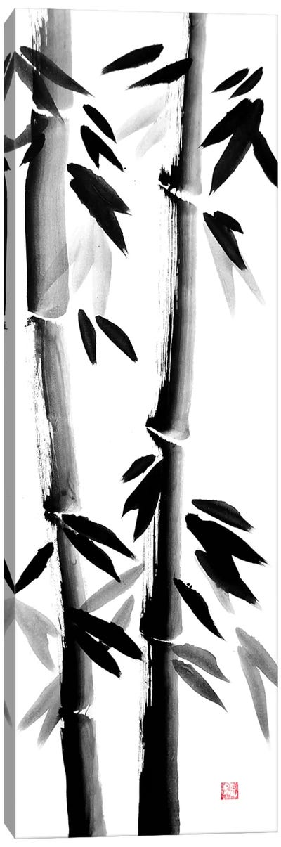 Bamboos On Canvas Canvas Art Print