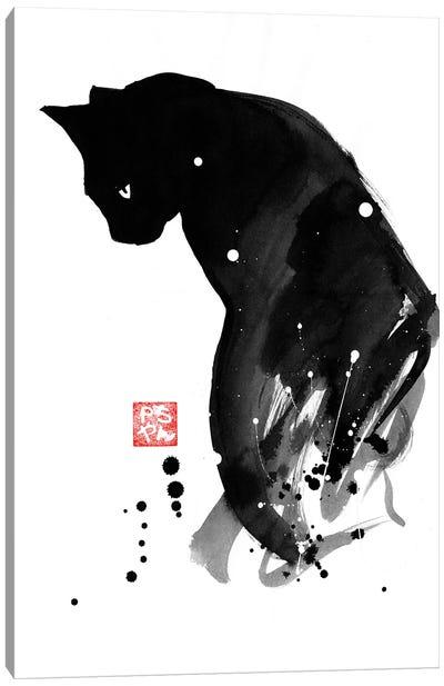 Chat A Tache Canvas Art Print
