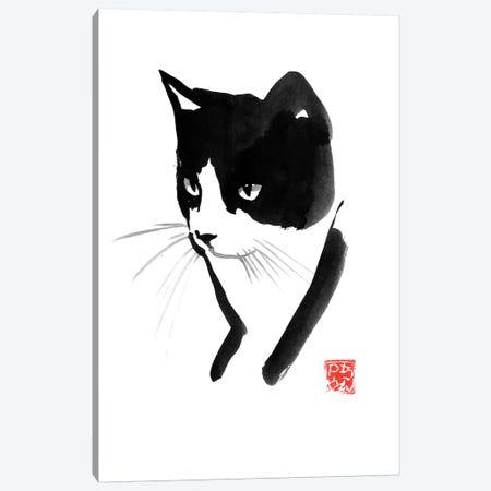 Cat Face Canvas Print #PCN290} by Péchane Canvas Wall Art