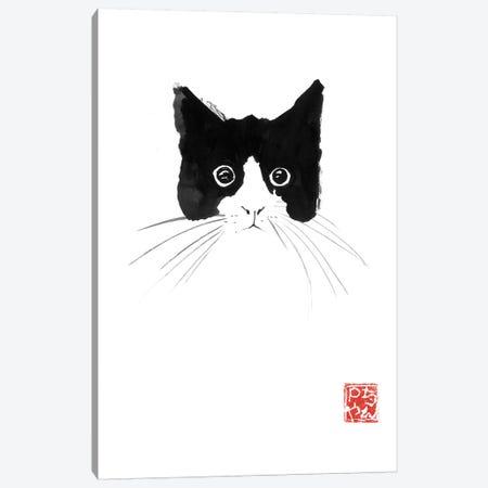 Cat Head Canvas Print #PCN291} by Péchane Canvas Wall Art
