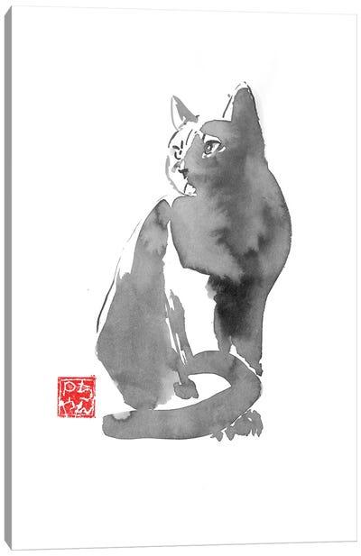 Gray Cat Canvas Art Print