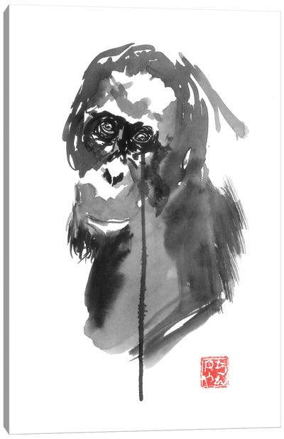 Borneo IV Canvas Art Print