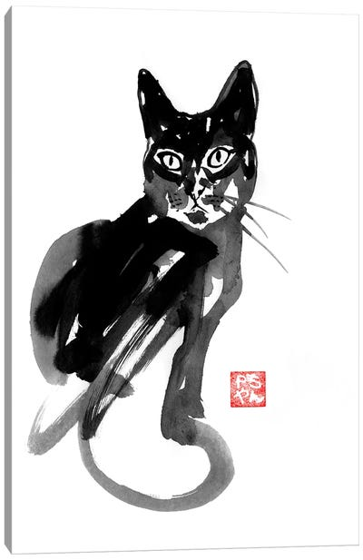 Chinese Cat Canvas Art Print