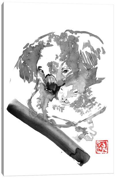 Koala IV Canvas Art Print