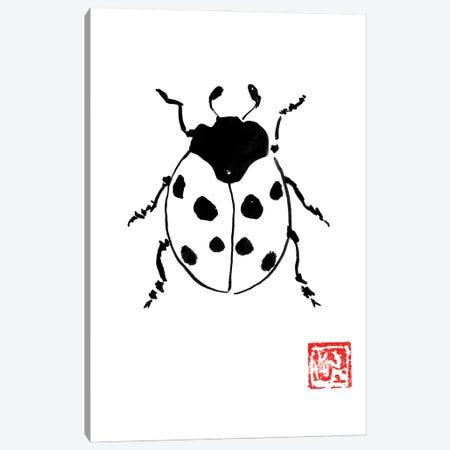 Ladybug Canvas Print #PCN355} by Péchane Canvas Art
