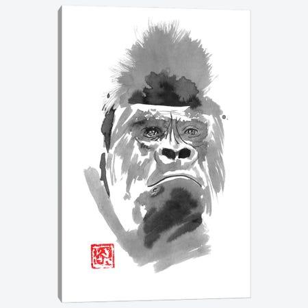 Concerned Gorilla Canvas Print #PCN360} by Péchane Canvas Artwork