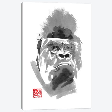 Concerned Gorilla Canvas Print #PCN360} by Péchane Canvas Artwork