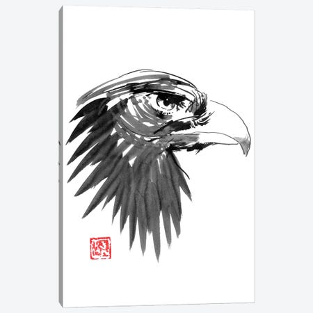 Eagle Eye Canvas Print #PCN363} by Péchane Canvas Art