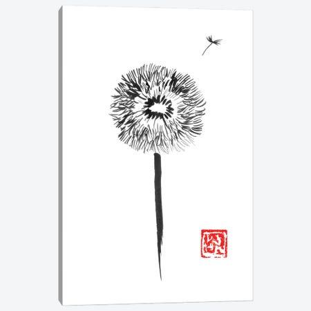 Dandelion Canvas Print #PCN370} by Péchane Canvas Print