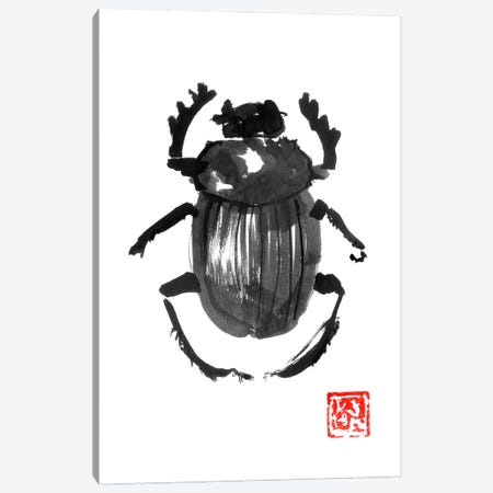 Beetle Canvas Print #PCN371} by Péchane Art Print