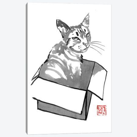 Cat In Box Canvas Print #PCN384} by Péchane Canvas Art Print