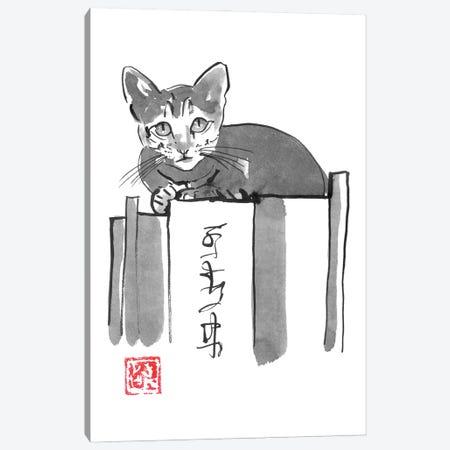 Cat On Books II Canvas Print #PCN385} by Péchane Art Print